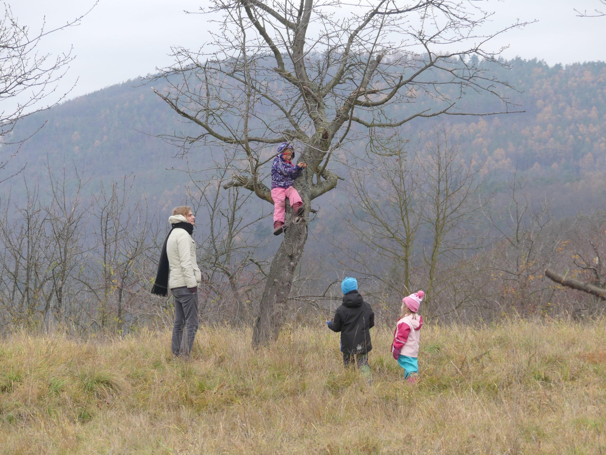 I vy můžete mít na Třešňovce svůj strom